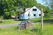 avernakø denmark house bikes green trees shadow