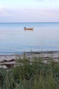 hov denmark marina boat blue