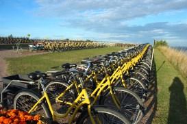 ven bikes