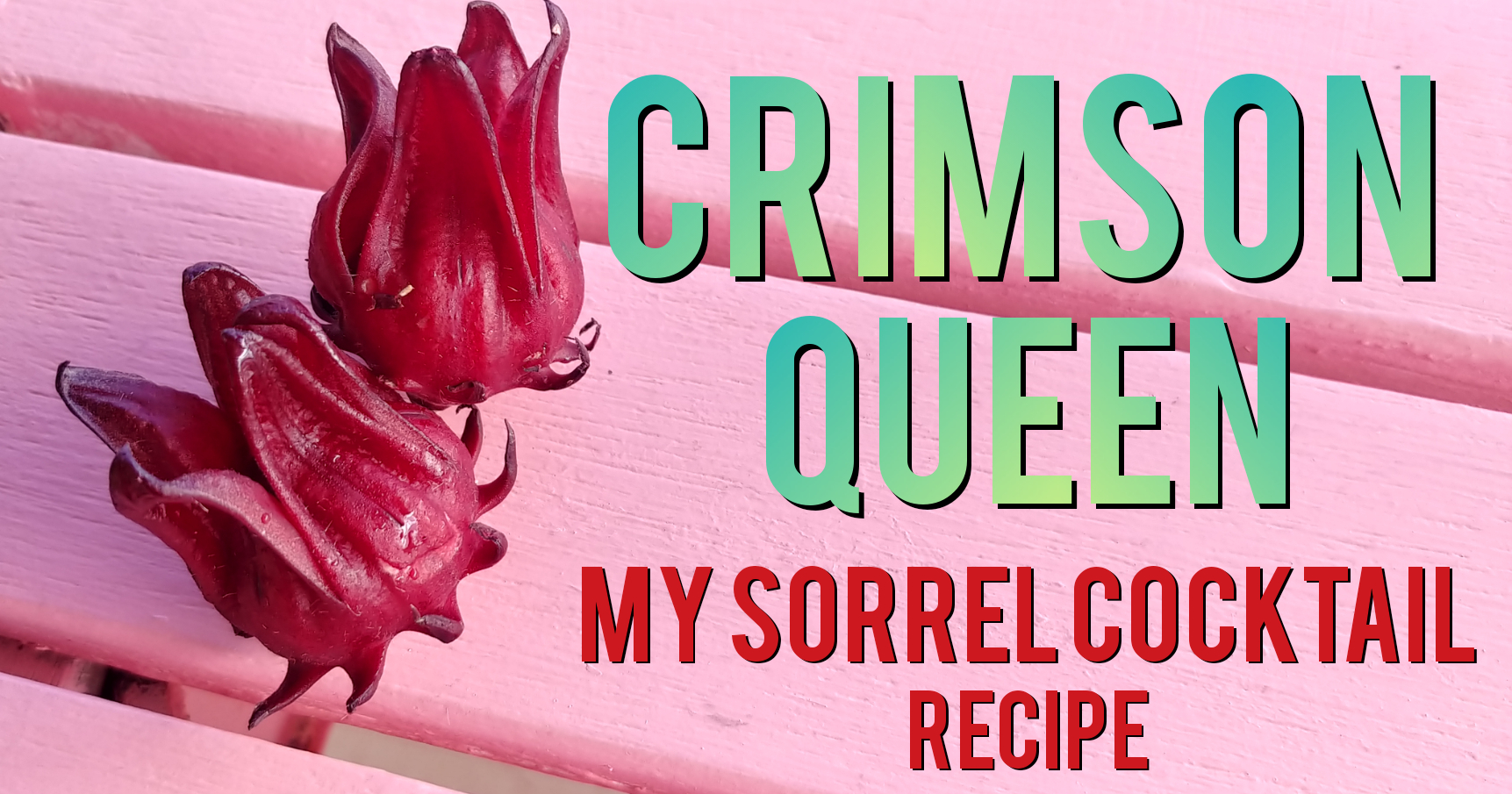 """Read more about the article My """"Crimson Queen Cocktail"""" made with Sorrel & Citrus Infused Gin"""
