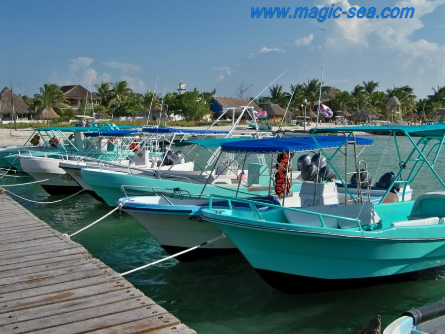 Holbox boat's tours