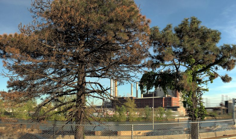 Schuylkill Generating Station view from River Fields Drive Philadelphia, Pennsylvania Copyright 2019, Bob Bruhin. All rights reserved.