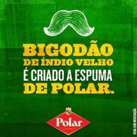 Polar - Bigodo_900