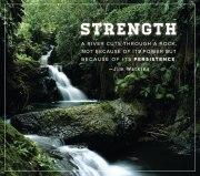 strength_persistnence_water.jpg