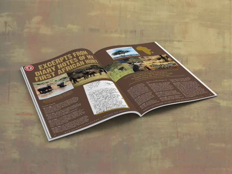 Magazine, Publication, Print