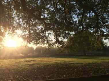 pasture-fall-sundown