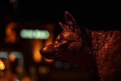 St. Charles - Fox Profile - Fox River © Bobbi Rose Photography