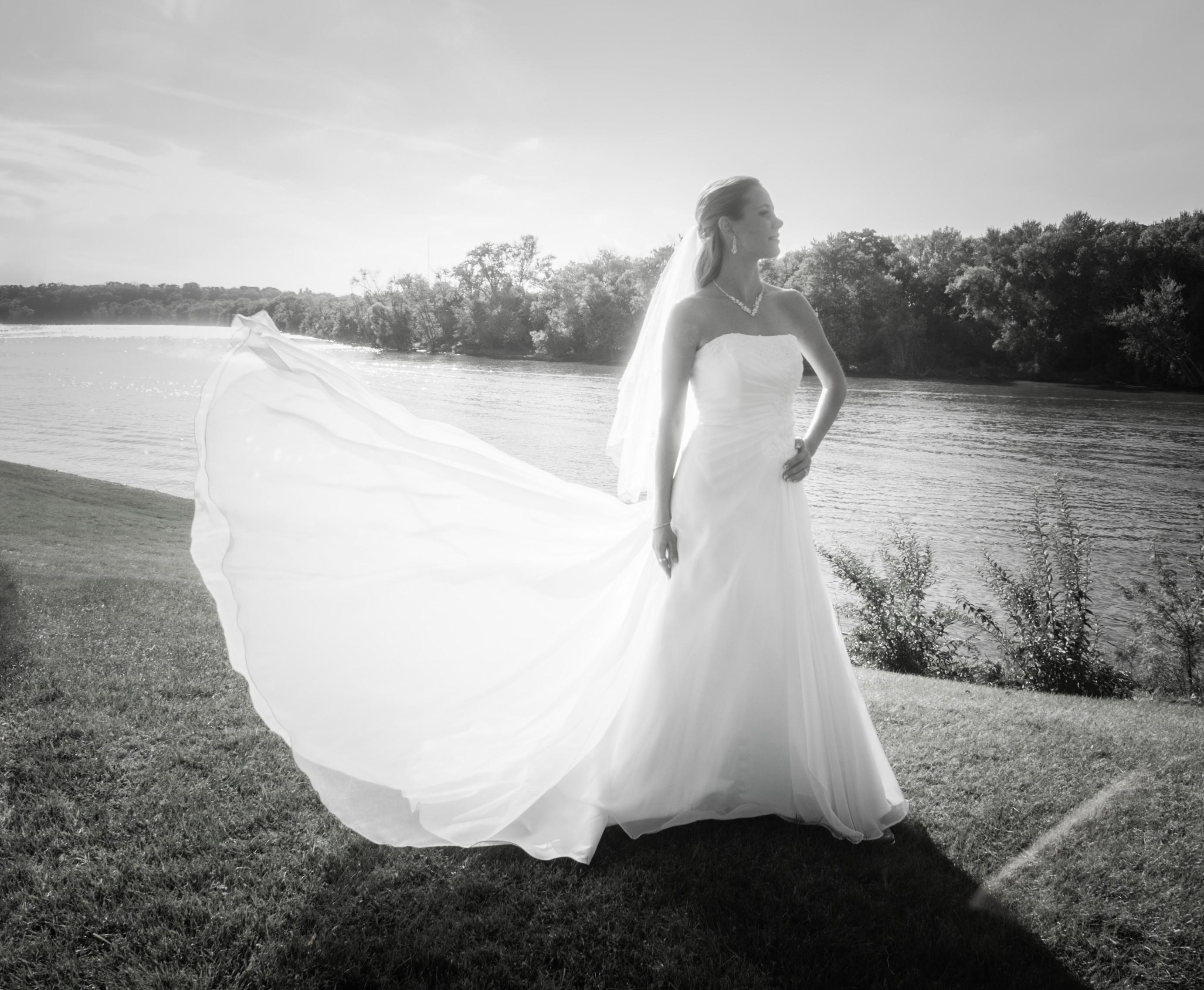 Wedding Fantasy