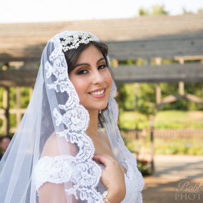 Gorgeous bride and veil