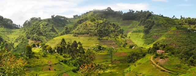 uganda-hillside