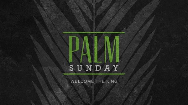 Palm sunday wide t