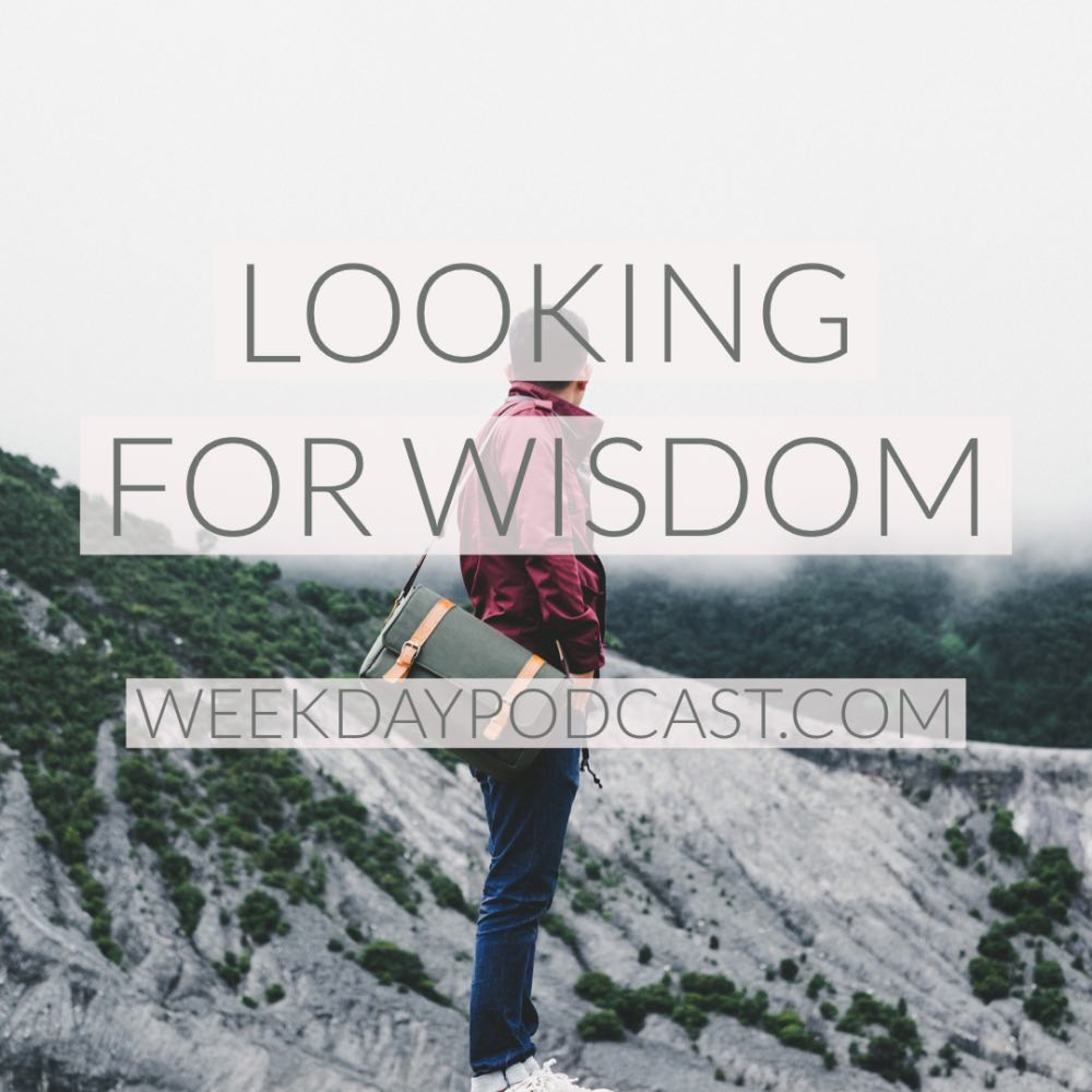 Looking for Wisdom