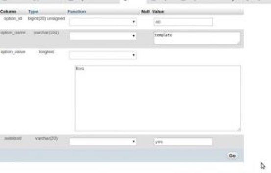 Alterar a atualização do banco de dados do wordpress theme