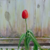 """""""Morning Tulip"""": Original SOLD/Canvas mounted print available"""
