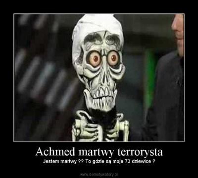 My (rowerowi) Terroryści