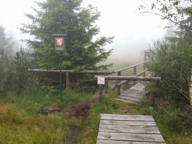 Góry Izerskie - Pierwsze bagniste tereny wIzerach