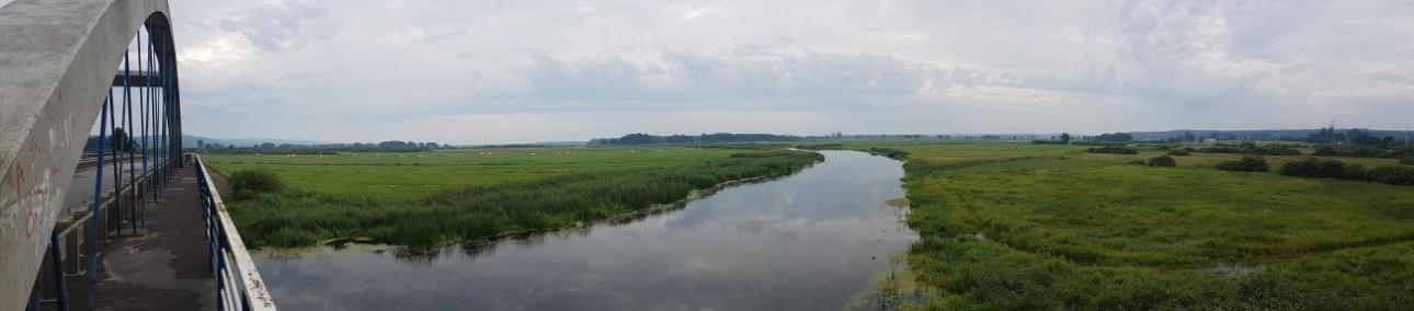 Panorama naNoteć