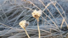 Rowerowe podsumowanie zimy