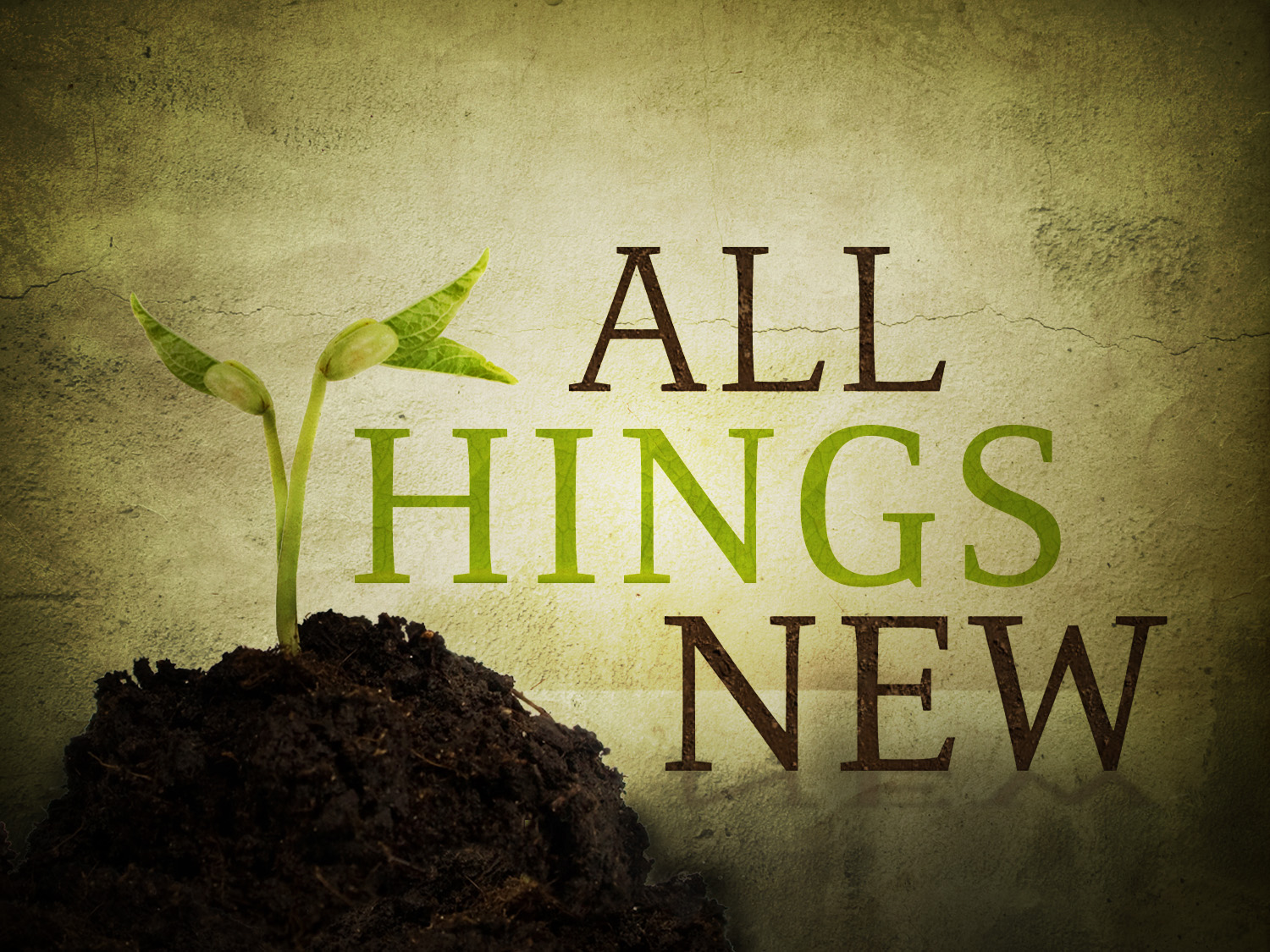 Image result for making all things new