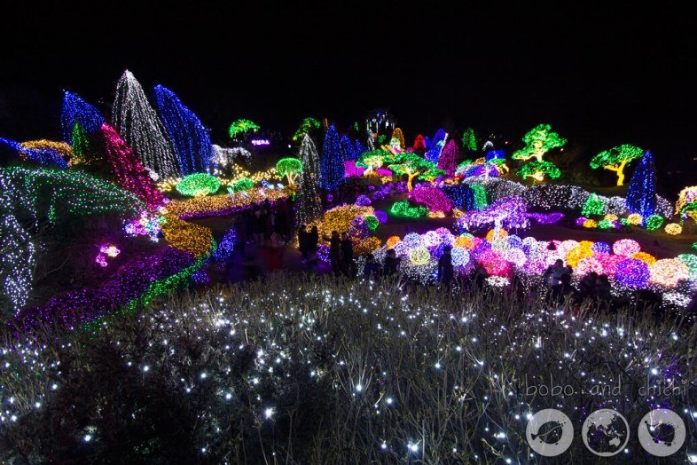 Cheongpyeong Lighting Festival Seoul Overview at night
