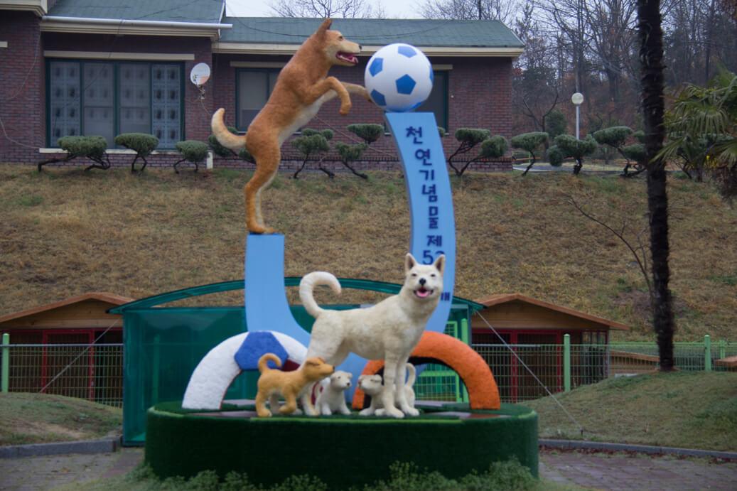 Jindo Dog Statue