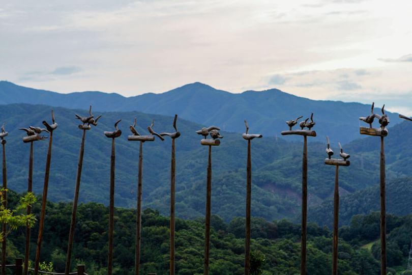 Birds-along-the-mountain