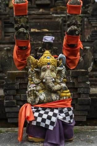 Ganesh says halt!