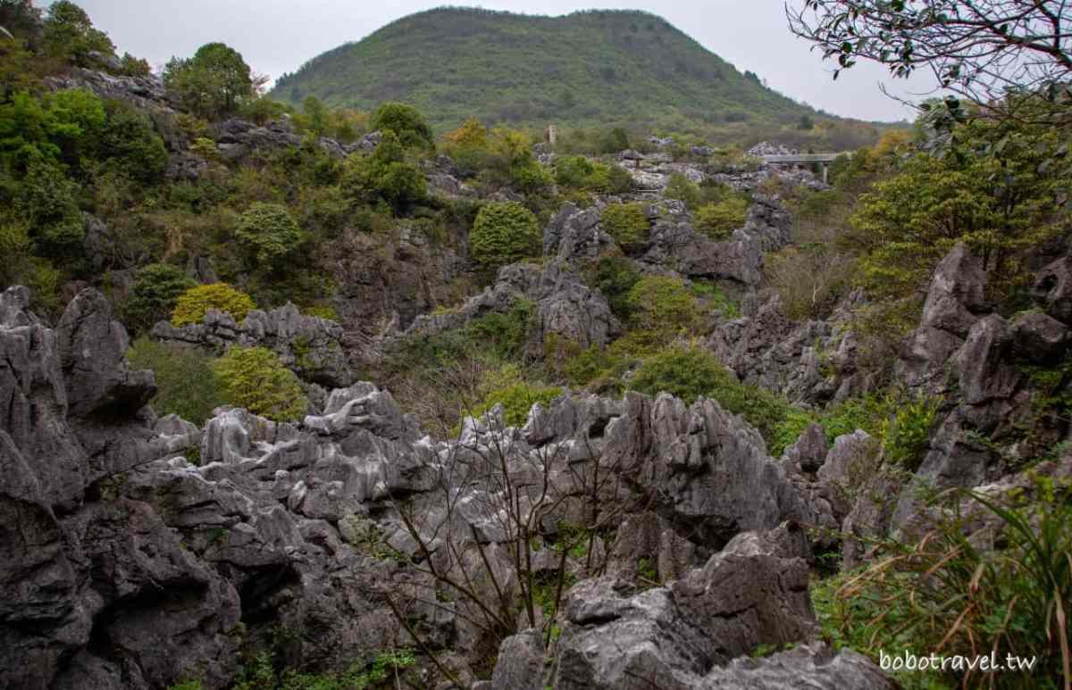三衢石林32