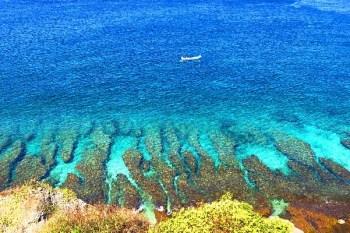 屏東小琉球亂亂逛|看藍色珊瑚礁找海龜、花瓶岩踏浪喝咖啡,搭船交通指南、租機車凸全島