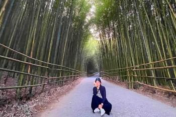 苗栗景點》泰安烏嘎彥竹林. 彷彿走進京都嵐山的竹林隧道(交通停車資訊、週邊景點一日遊)