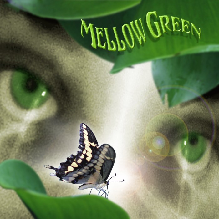 Mellow Green CD Cover Design & Illustration by Bob Paltrow