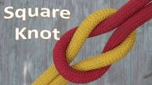SQ Knot 2