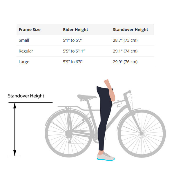 Momentum-Street-Size-Guide