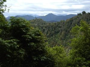 Aotearoa-Te-Urewera