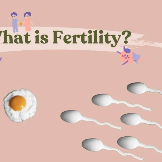 what is fertility