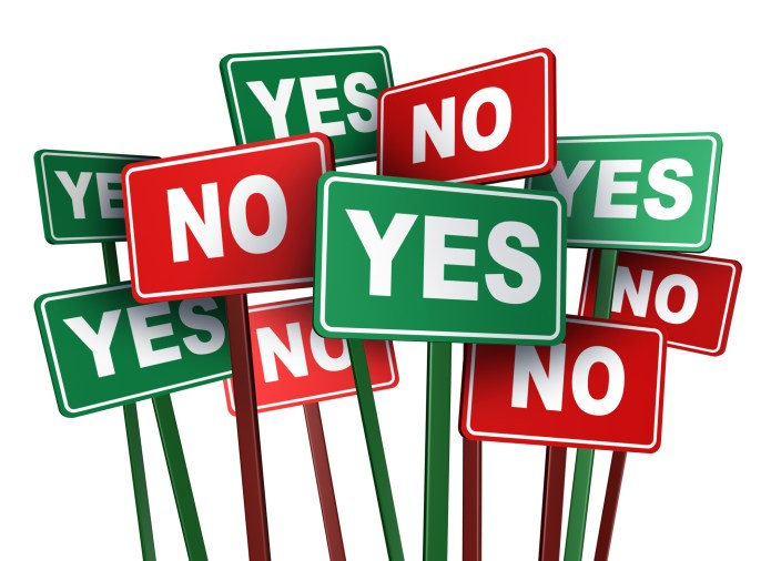 What Say You?…A Simple Yes or No Will Do