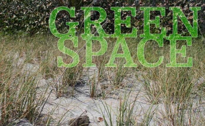 The Exhaustion Of Fighting To Save Green Space In Boca