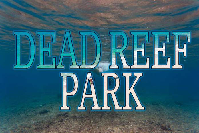 There used to be a reef at Red Reef Park.