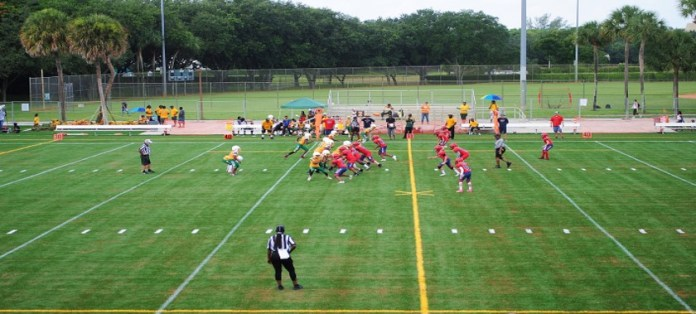 Patch Reef Park's New Turf Fields Draw Rave Reviews