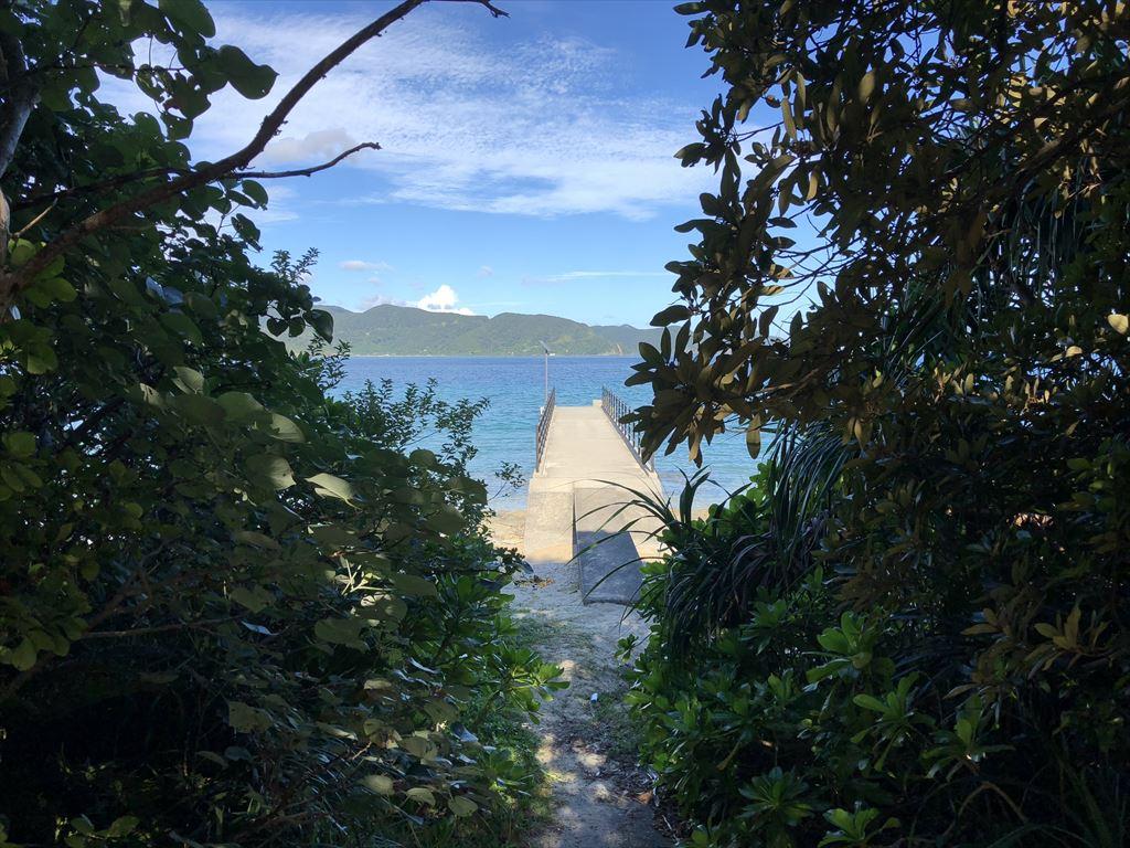 加計呂麻島スリ浜桟橋への道