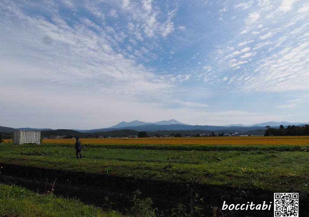東川町たんぼと大雪山旭岳