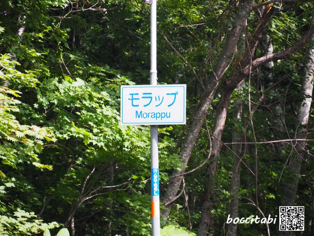 支笏湖モラップ