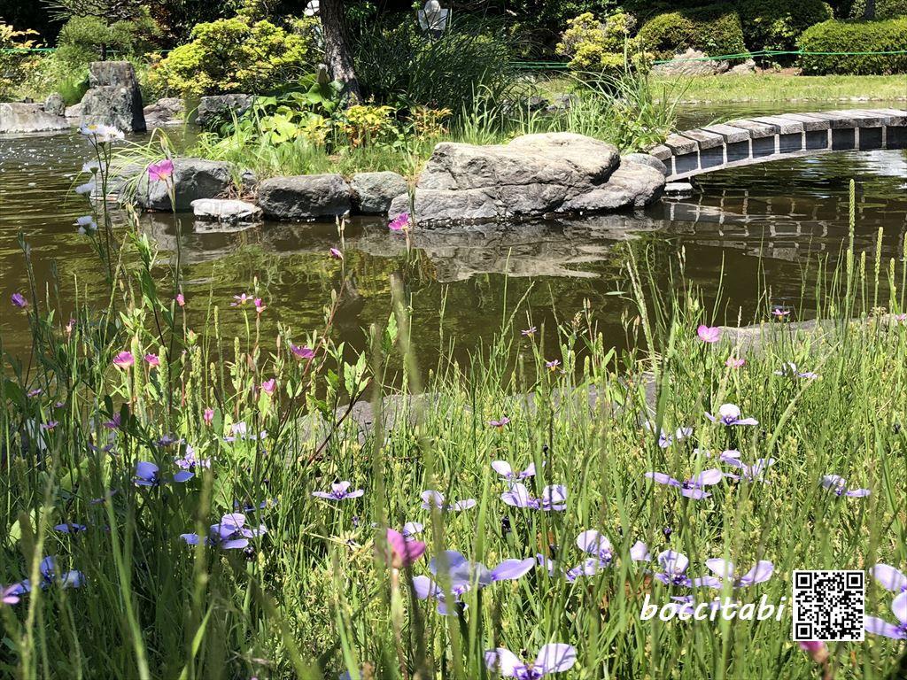 日比谷花壇大船フラワーセンター 和庭園