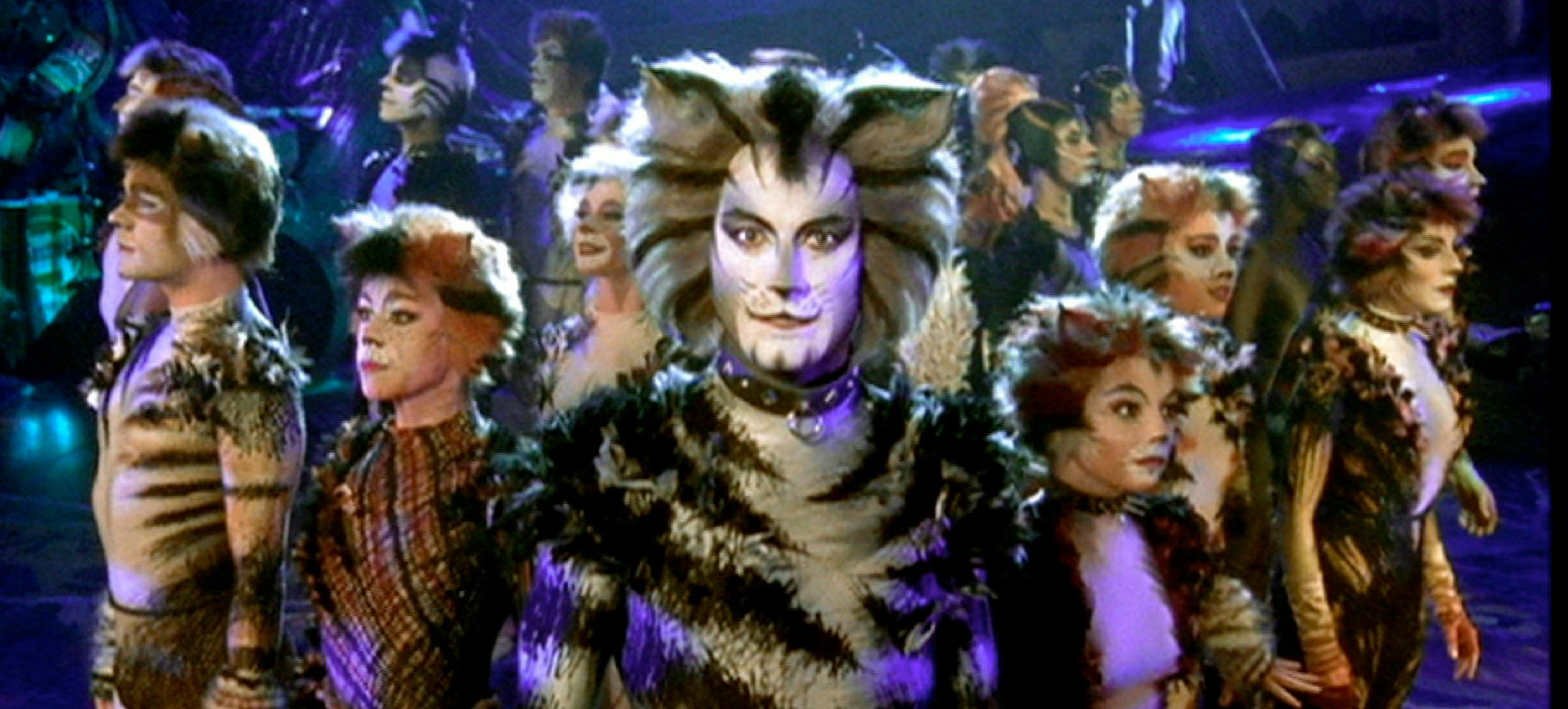 Cats. The celebrated musical in Valletta