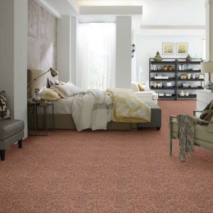 Bedroom with Frieze style carpet floors