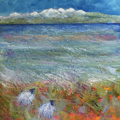 Art Cards from Marion Boddy-Evans Beach Combing