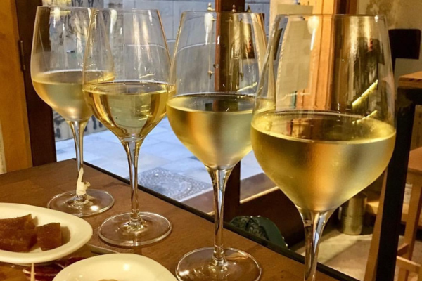 Wine Tastings in Barcelona – Experience Spanish Wines