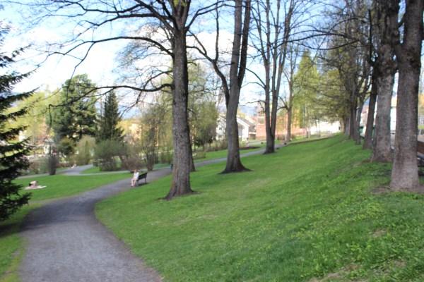 På vei inn i Søndre park