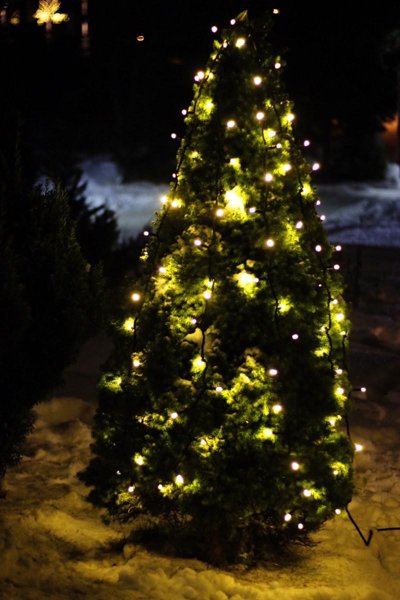 Julebelysning ute
