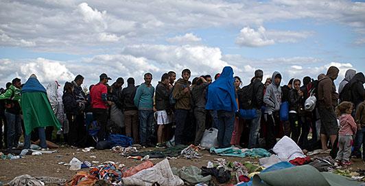 flyktingkrisen